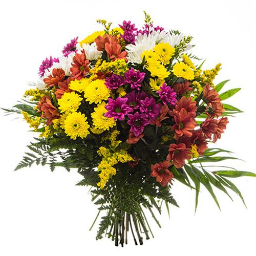 Eye-Catching Mixed Color Daisies Bouquet