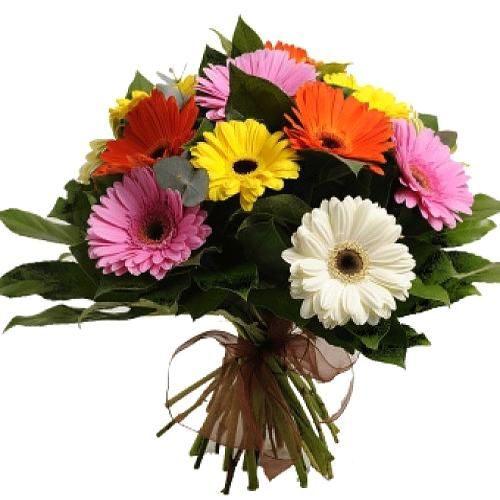 Trendy Bunch of Colorful Gerberas