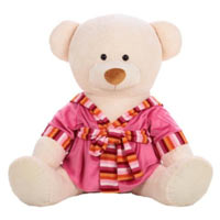 Lovely Teddy Bear Soft Toy for your Dear Ones