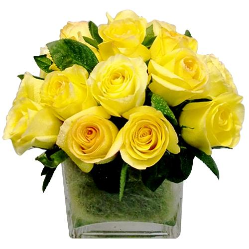 Blooming Modern Embrace 20 Roses Bouquet