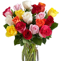 Pretty Display of Twenty Four Colorful Roses in a Vase