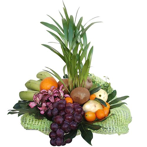 Carefully-Selected Fruits Basket with Plant