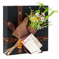 Sumptuous Celebrate Seasons with Chocolate Gift Set