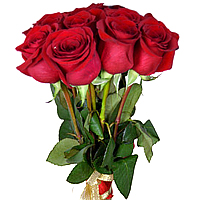 Sweet Emotions Gift Pack of Six Roses in Red <br>