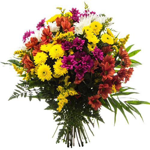 Pure passion Bouquet of�Variant Daisies