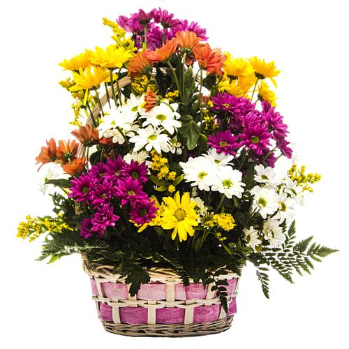 Dreamy Floral Basket of Daisies in Different Color