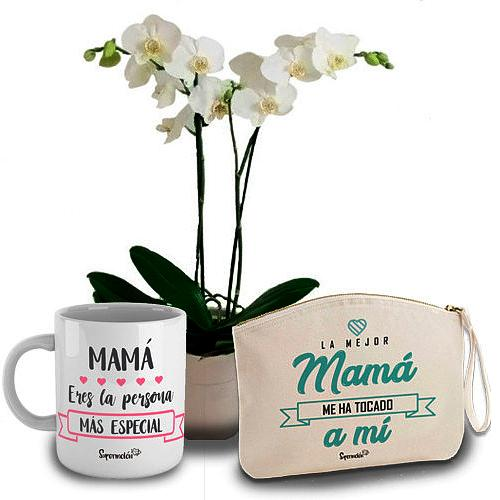 Blossom-Filled Mothers Day Gift of Orchids with Cup and Bag<br><br>