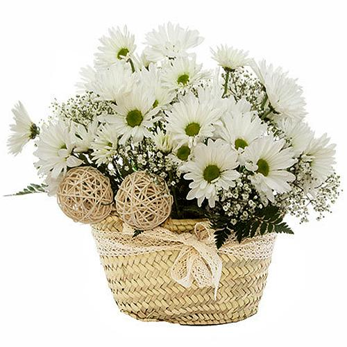 Fragrance Perfect Mixed Floral Basket for Mom<br>